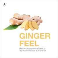 Matt Pear 50 г - Ginger Feel